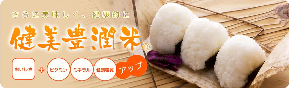 健美豊潤米